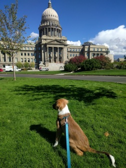 Lima outside Idaho Capitol Bldg